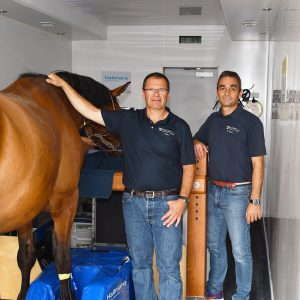 Above and beyond:  over 100,000 horses scanned in over 100 Standing Equine MRI systems