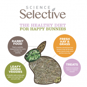 Veterinary professionals estimate that less than 40% of rabbits and guinea pigs are being fed correctly