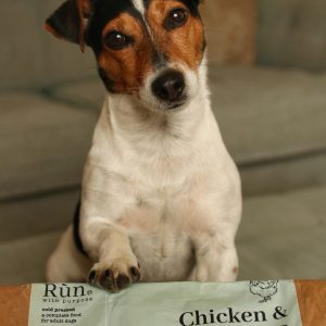 Rùn raises the bar on eco dog food in plastic-free July