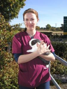 Molly Varga rabbit specialist